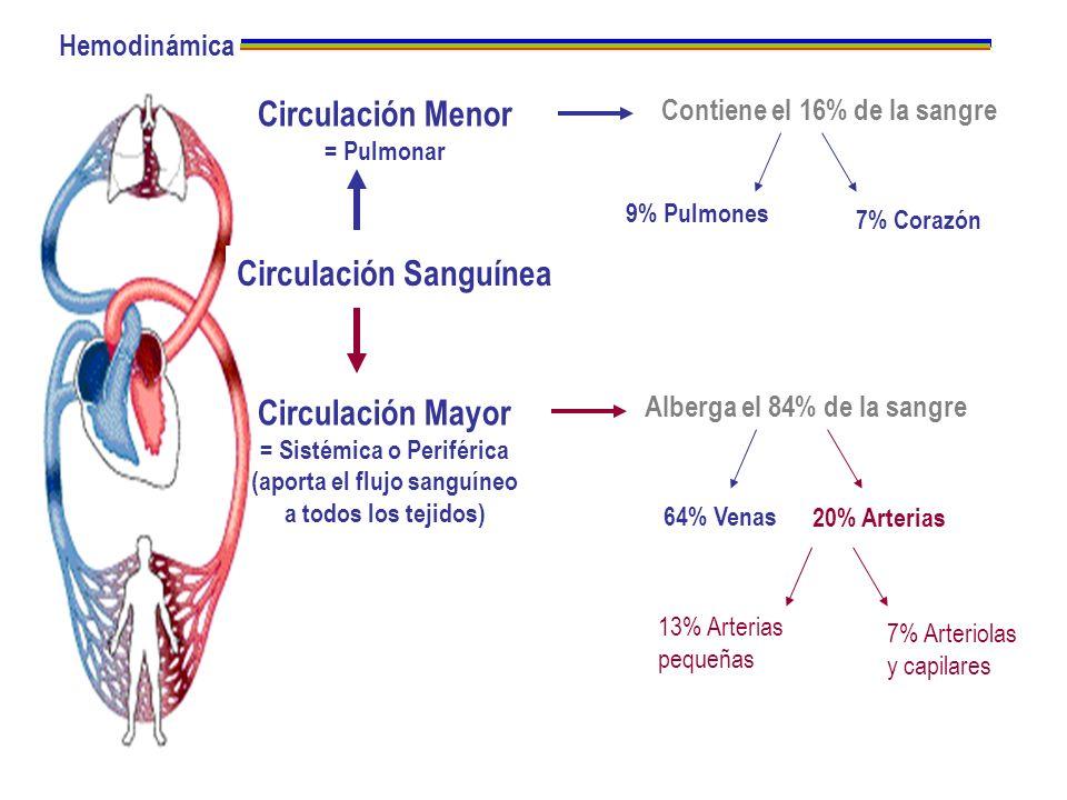 Circulación Menor Circulación Mayor