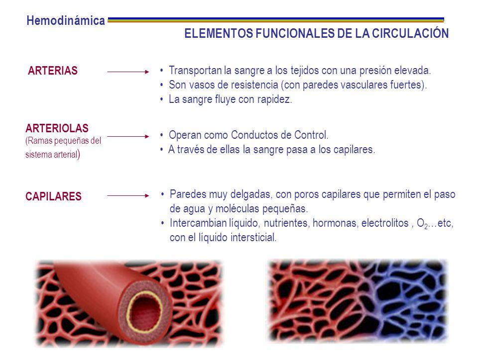 ELEMENTOS FUNCIONALES DE LA CIRCULACIÓN