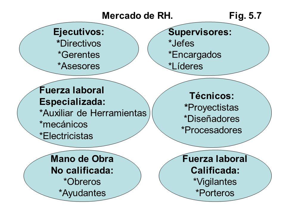 Mercado de RH. Fig. 5.7 Ejecutivos: *Directivos. *Gerentes. *Asesores. Supervisores: