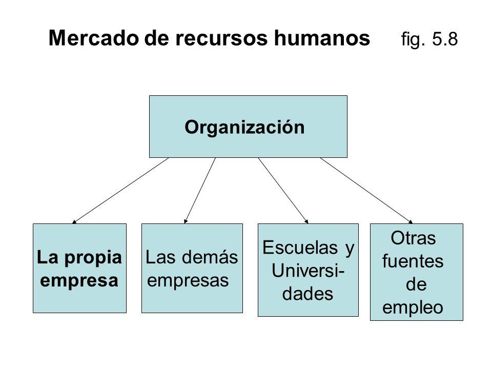 Mercado de recursos humanos fig. 5.8