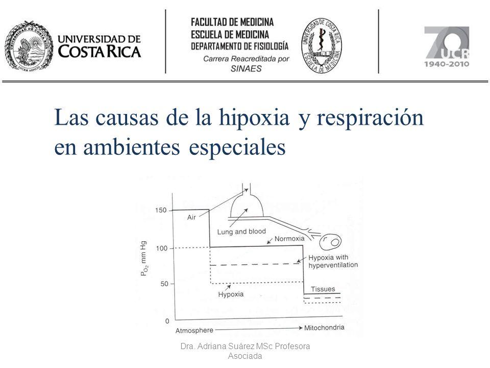 Dra. Adriana Suárez MSc Profesora Asociada