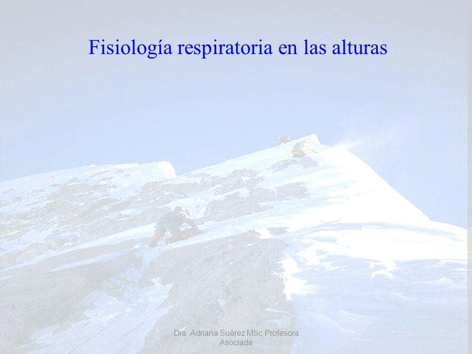 Fisiología respiratoria en las alturas
