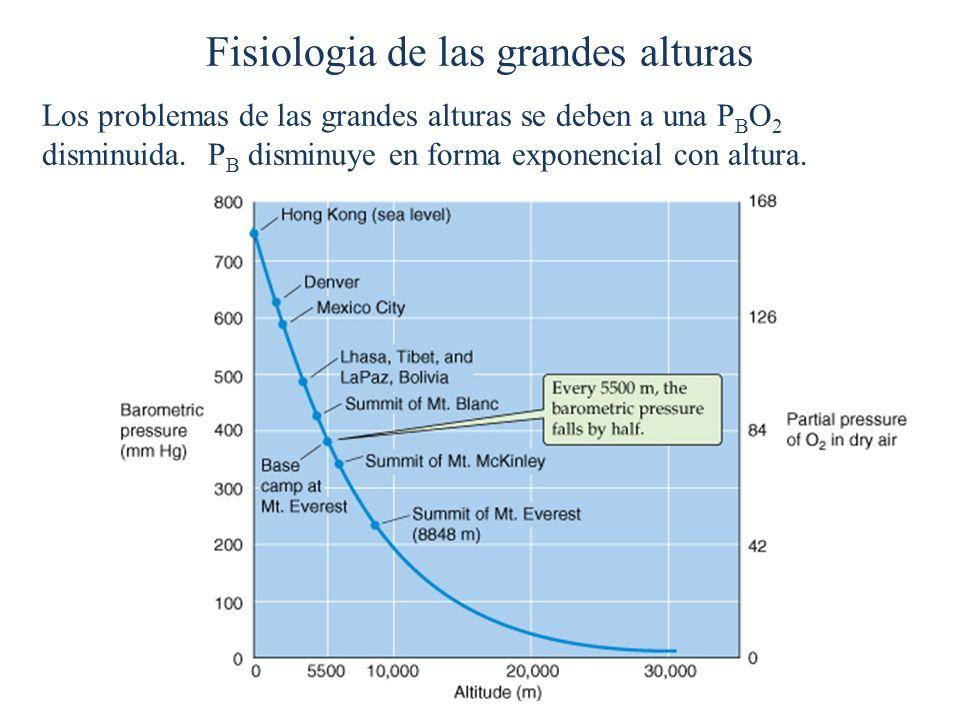 Fisiologia de las grandes alturas