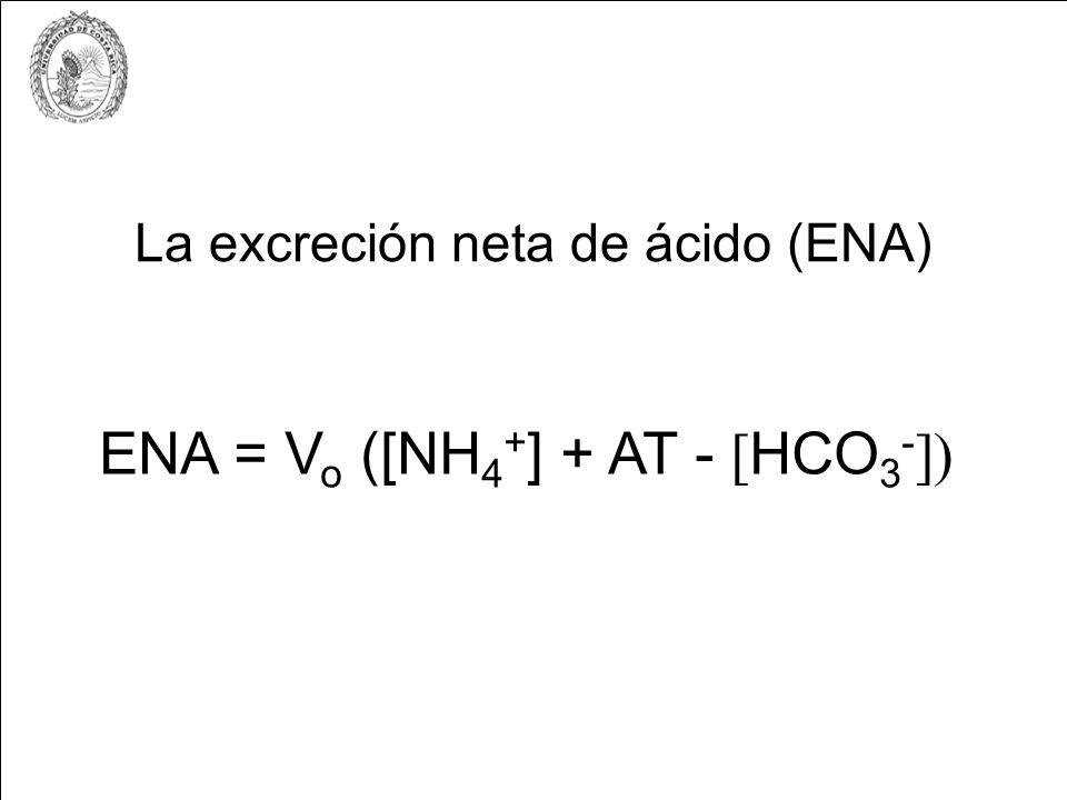 La excreción neta de ácido (ENA)
