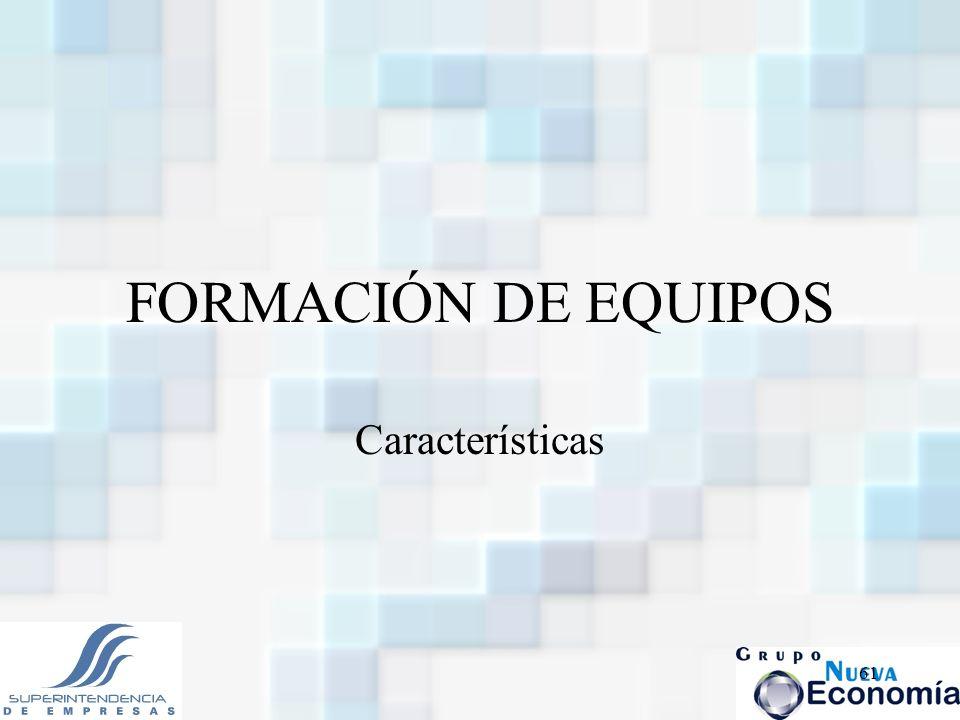 FORMACIÓN DE EQUIPOS Características