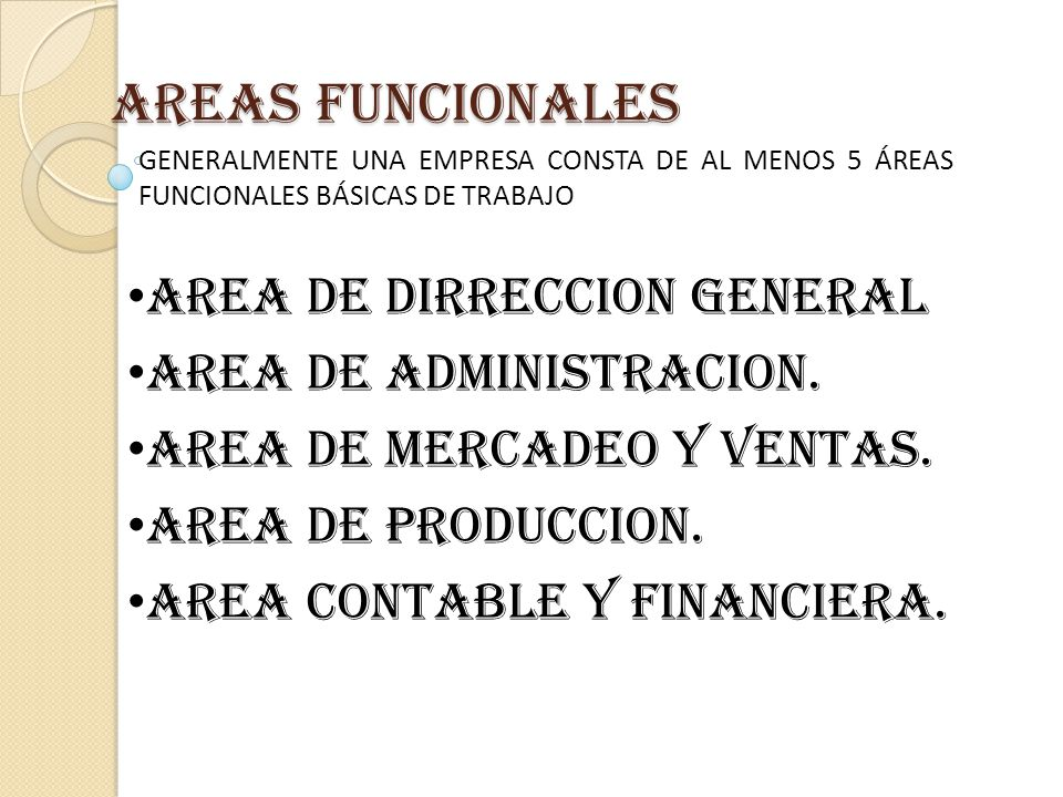 AREAS FUNCIONALES AREA DE DIRRECCION GENERAL AREA DE ADMINISTRACION.