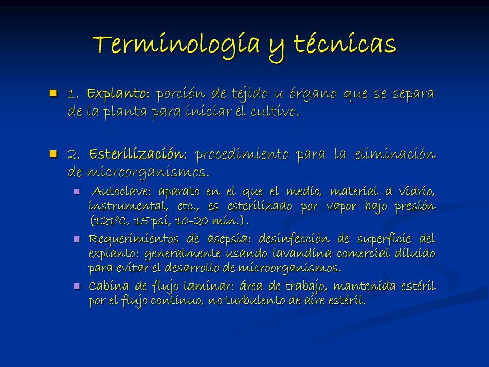 Terminología y técnicas