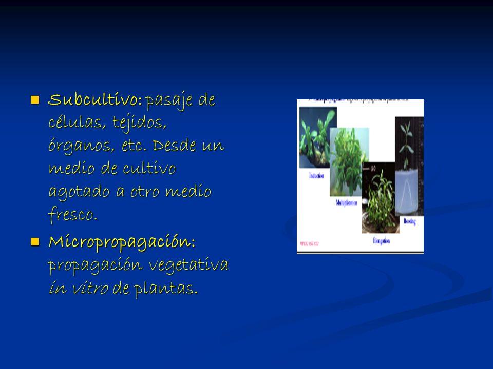 Subcultivo: pasaje de células, tejidos, órganos, etc