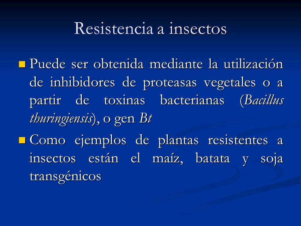 Resistencia a insectos