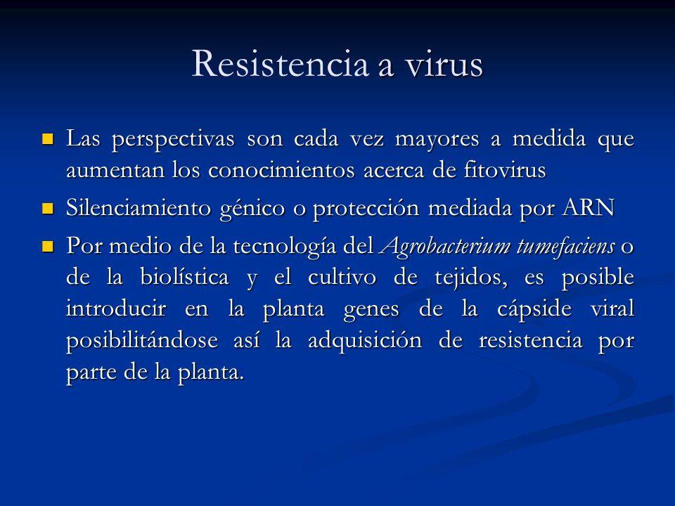 Resistencia a virus Las perspectivas son cada vez mayores a medida que aumentan los conocimientos acerca de fitovirus.