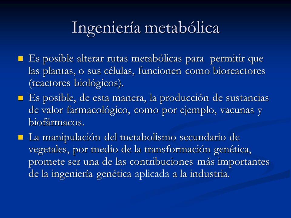 Ingeniería metabólica