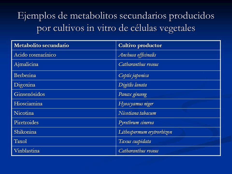 Ejemplos de metabolitos secundarios producidos por cultivos in vitro de células vegetales