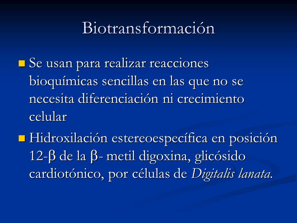 Biotransformación Se usan para realizar reacciones bioquímicas sencillas en las que no se necesita diferenciación ni crecimiento celular.
