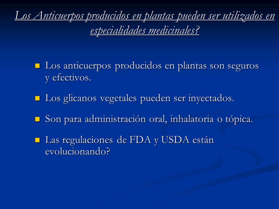 Los Anticuerpos producidos en plantas pueden ser utilizados en especialidades medicinales