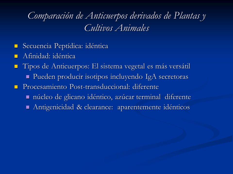 Comparación de Anticuerpos derivados de Plantas y Cultivos Animales