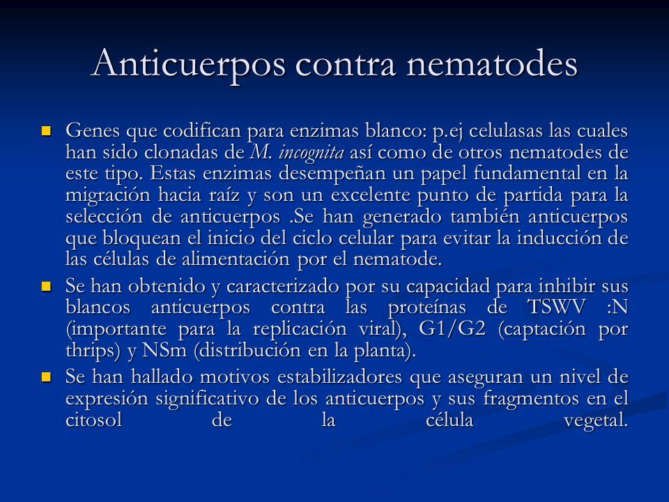 Anticuerpos contra nematodes