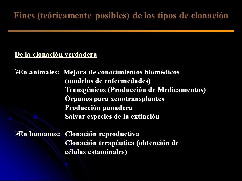 Fines (teóricamente posibles) de los tipos de clonación