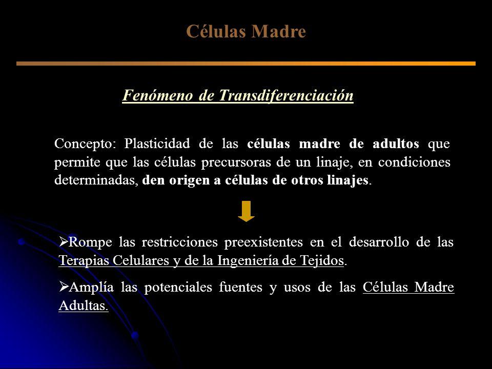 Fenómeno de Transdiferenciación