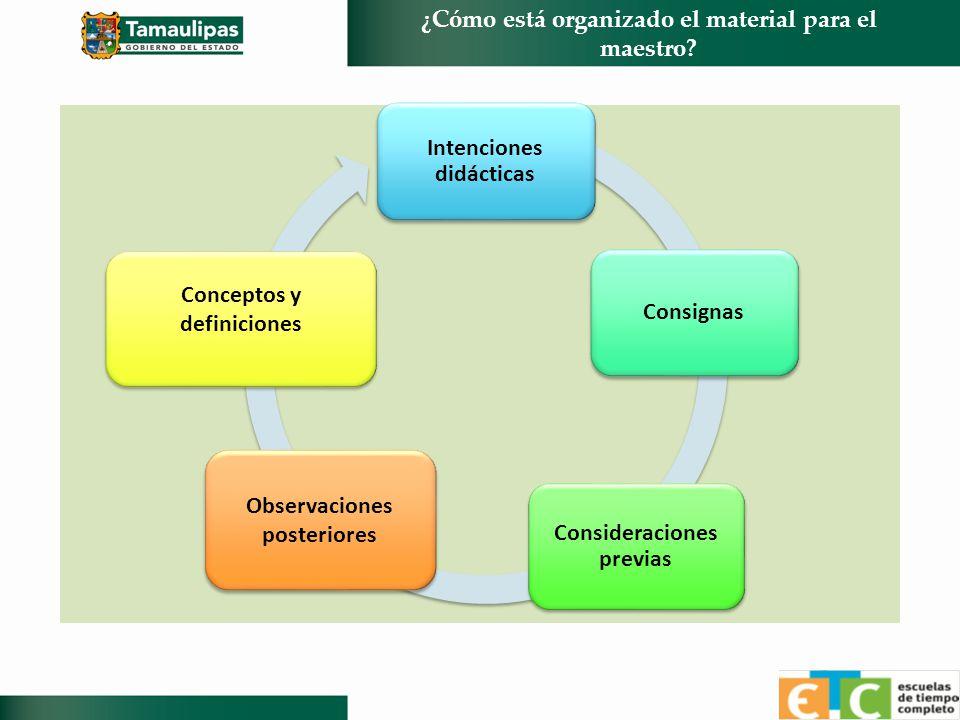 ¿Cómo está organizado el material para el maestro