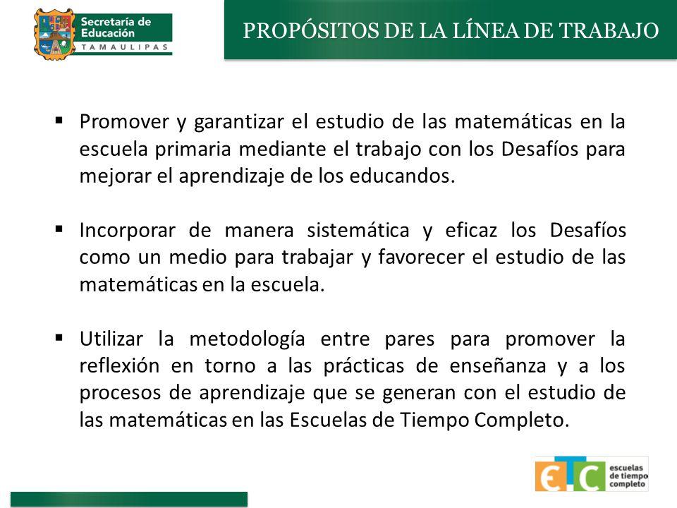 PROPÓSITOS DE LA LÍNEA DE TRABAJO