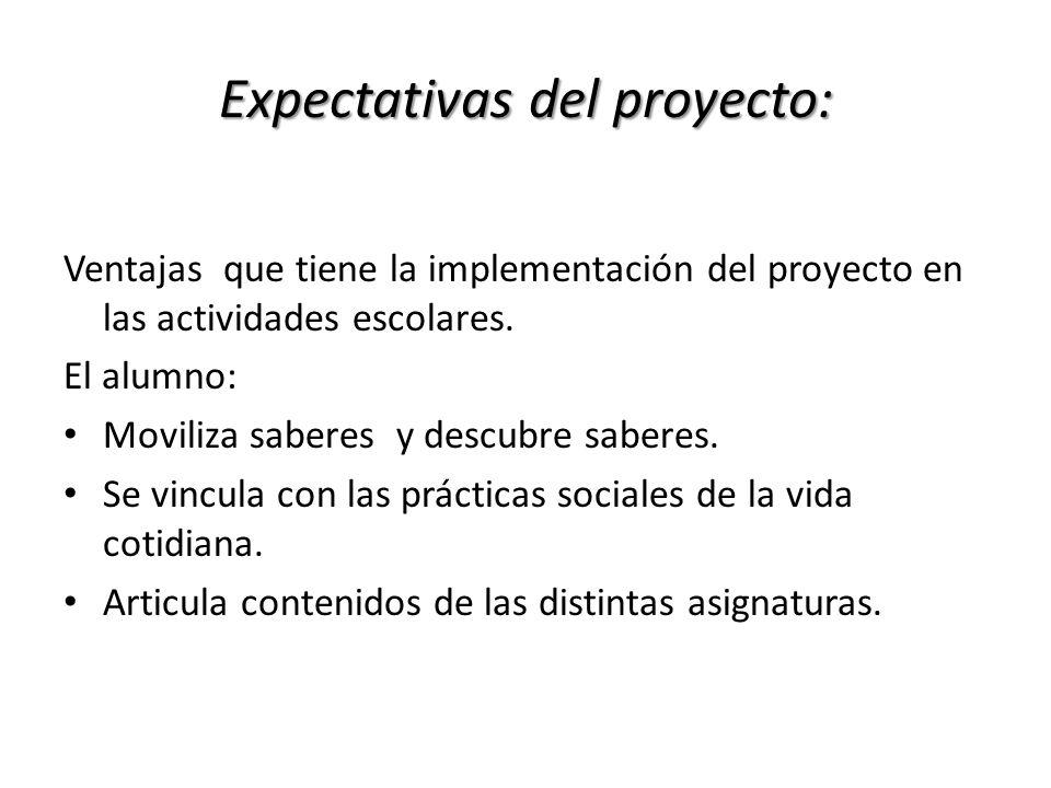 Expectativas del proyecto: