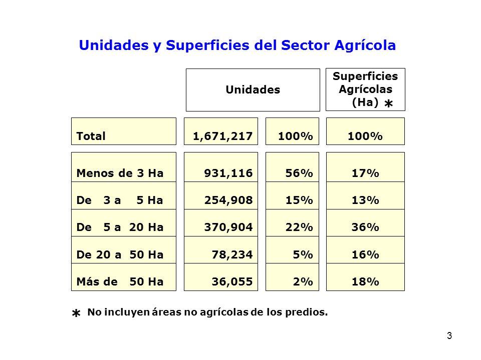 * * Unidades y Superficies del Sector Agrícola Unidades Superficies