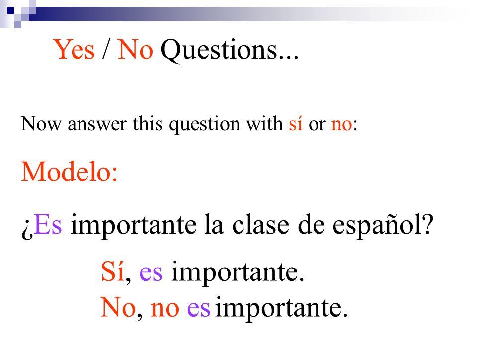 ¿Es importante la clase de español