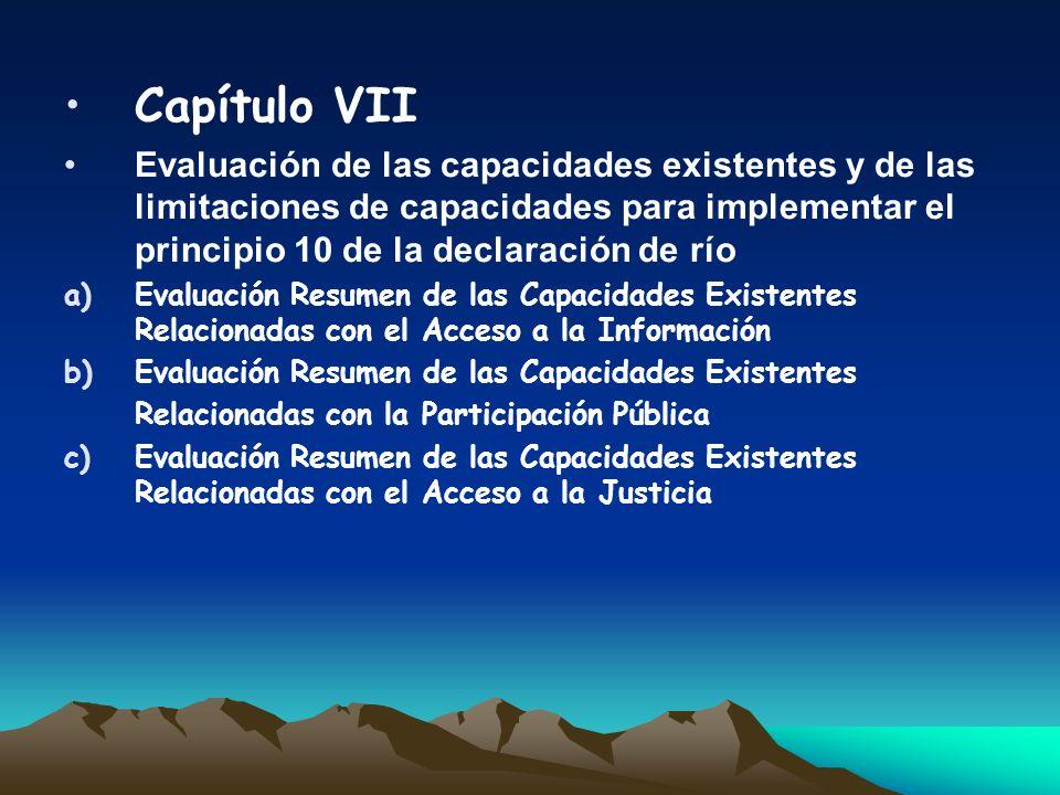 Capítulo VIIEvaluación de las capacidades existentes y de las limitaciones de capacidades para implementar el principio 10 de la declaración de río.