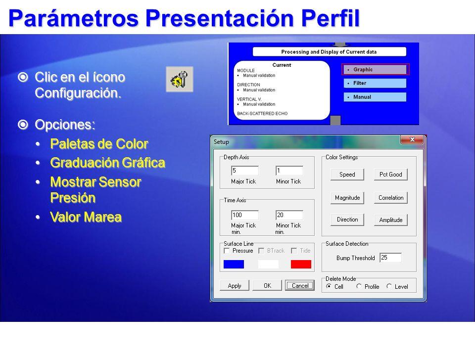 Parámetros Presentación Perfil