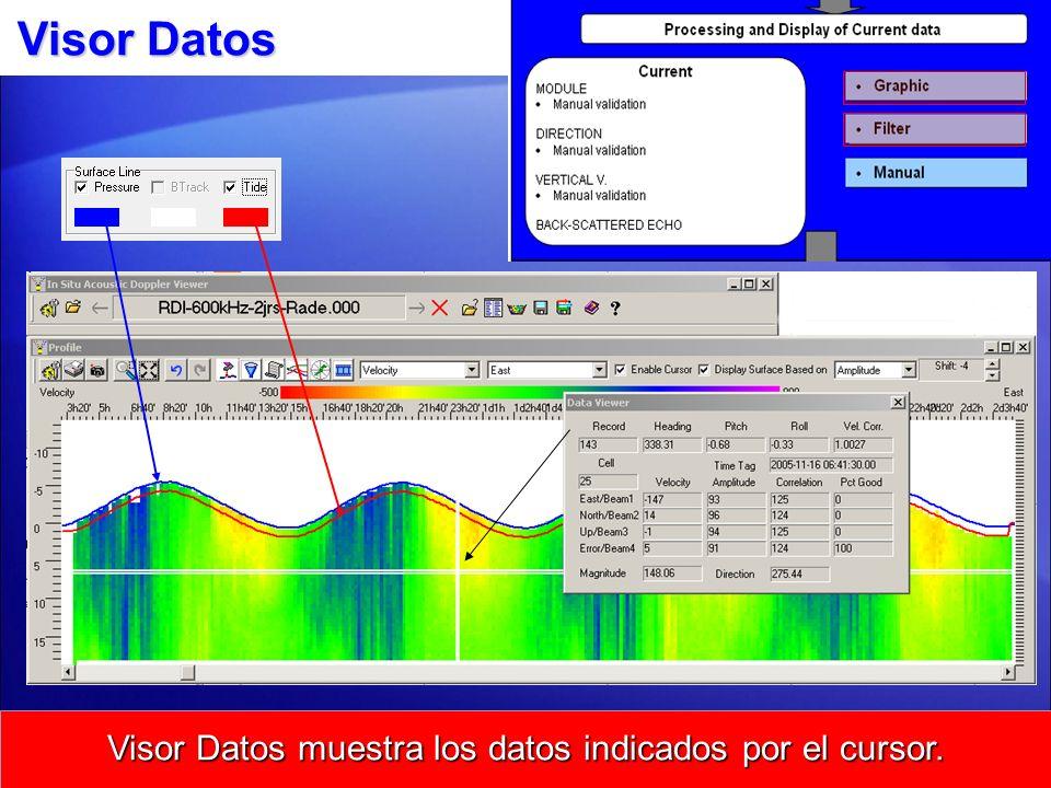 Visor Datos muestra los datos indicados por el cursor.