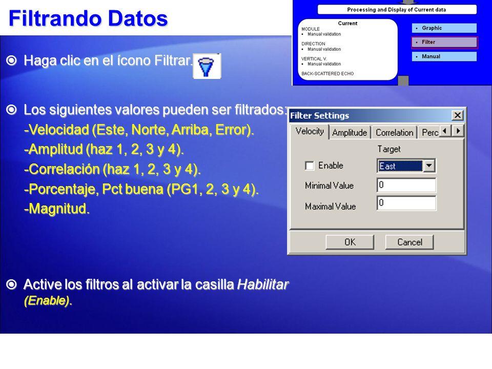 Filtrando Datos Haga clic en el ícono Filtrar.