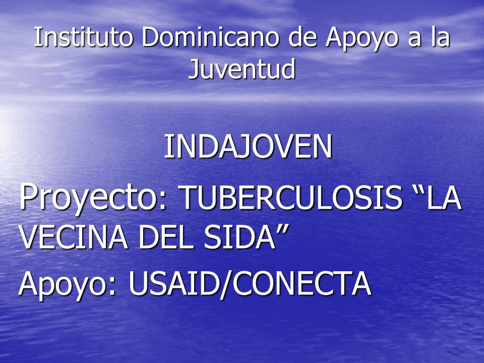 Instituto Dominicano de Apoyo a la Juventud