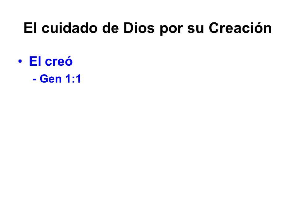 El cuidado de Dios por su Creación