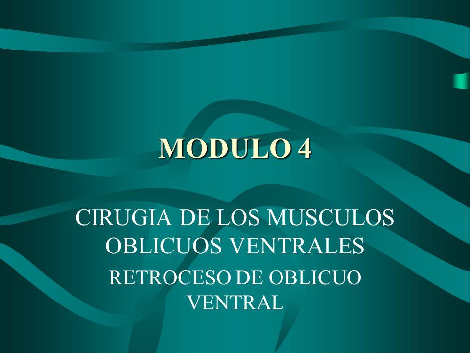 MODULO 4 CIRUGIA DE LOS MUSCULOS OBLICUOS VENTRALES