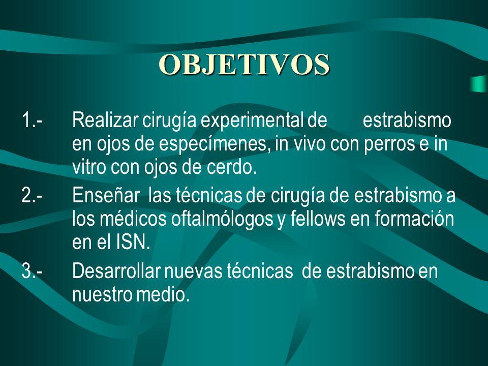 OBJETIVOS1.- Realizar cirugía experimental de estrabismo en ojos de especímenes, in vivo con perros e in vitro con ojos de cerdo.