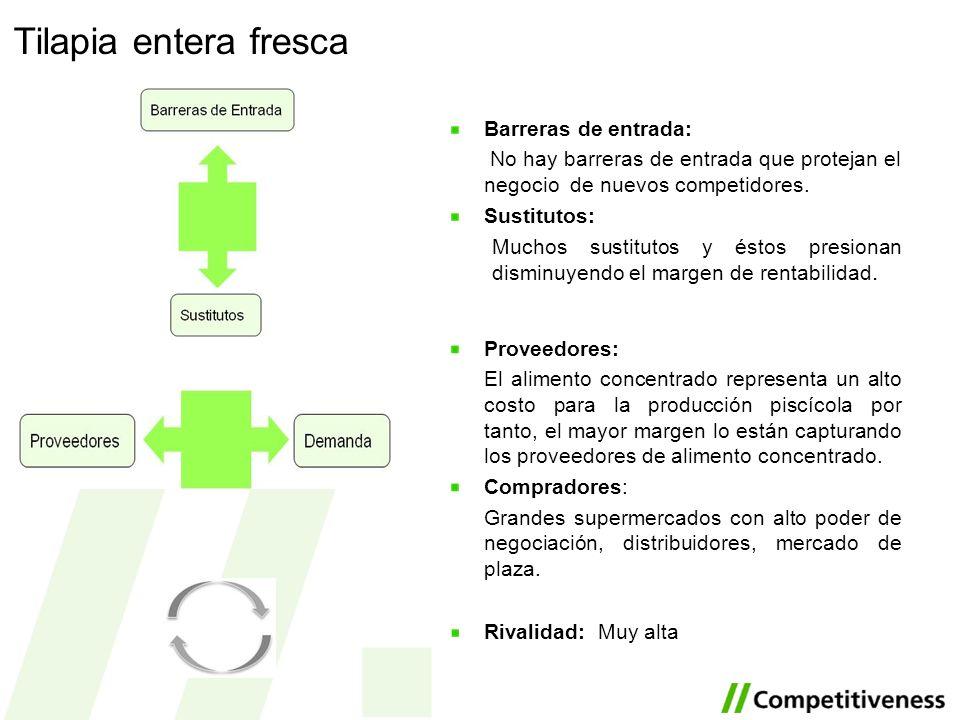 Tilapia entera fresca Barreras de entrada: