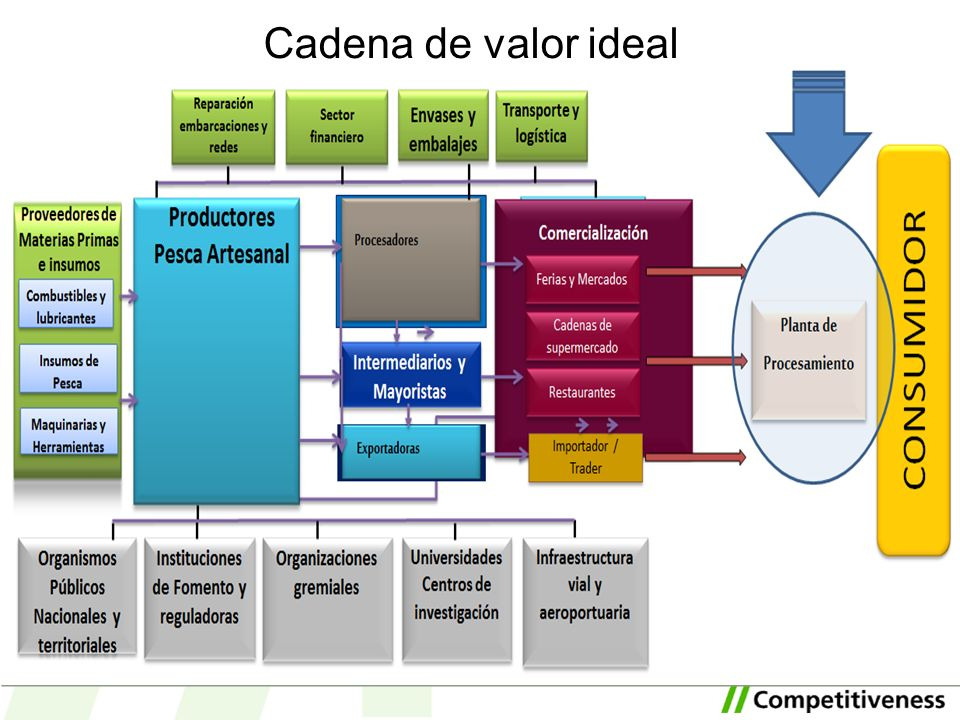 Cadena de valor ideal Explain the ideal value chain for the innovative option and compare it to the actual cluster situation.