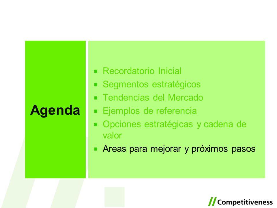 Agenda Recordatorio Inicial Segmentos estratégicos