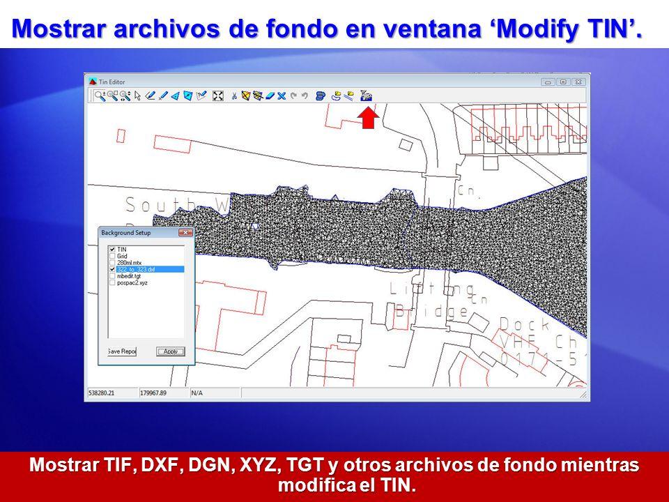 Mostrar archivos de fondo en ventana 'Modify TIN'.