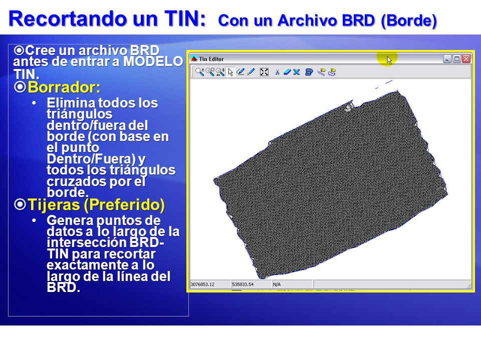 Recortando un TIN: Con un Archivo BRD (Borde)