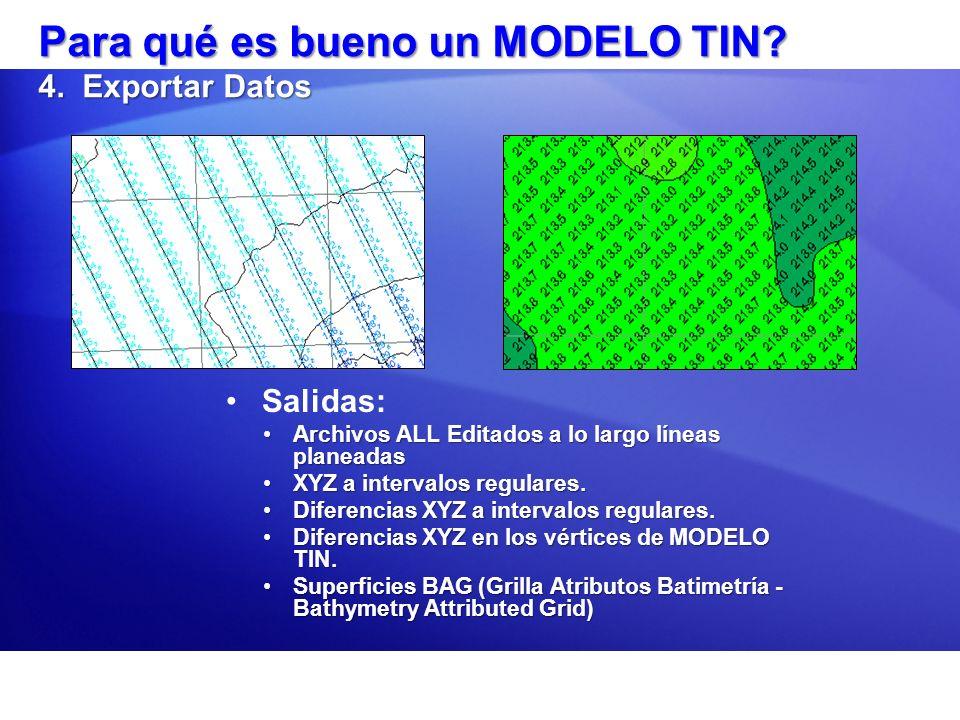 Para qué es bueno un MODELO TIN 4. Exportar Datos