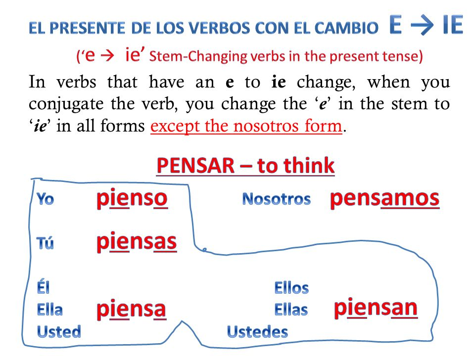 ('e  ie' Stem-Changing verbs in the present tense)