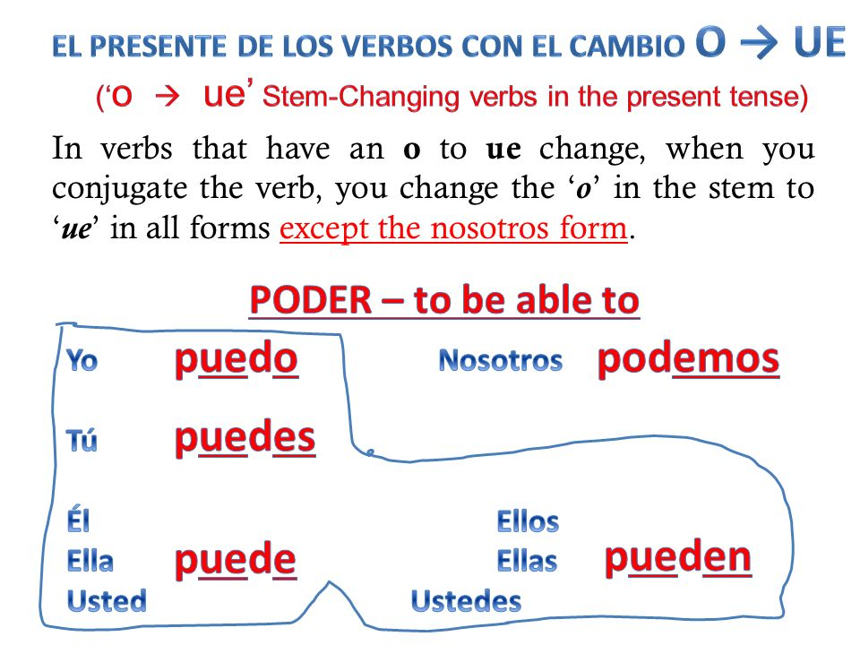 ('o  ue' Stem-Changing verbs in the present tense)