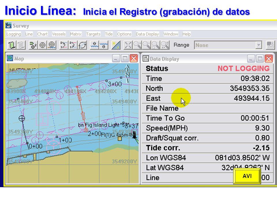 Inicio Línea: Inicia el Registro (grabación) de datos