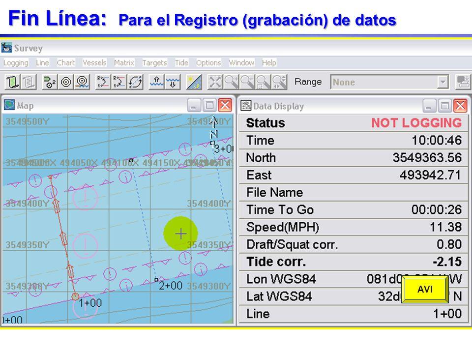 Fin Línea: Para el Registro (grabación) de datos