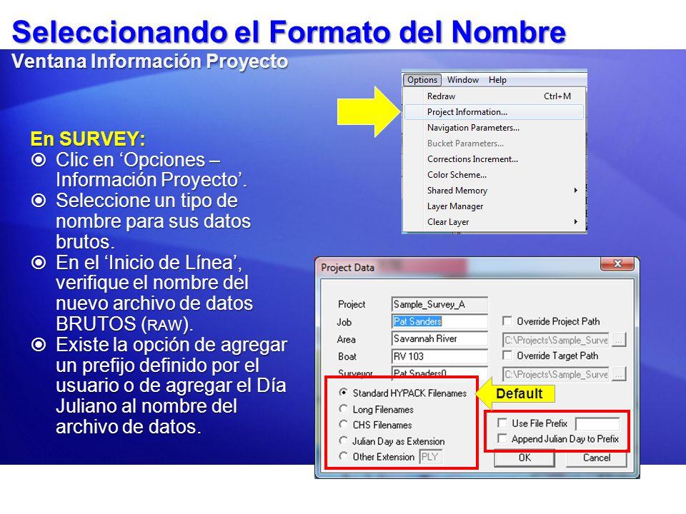 Seleccionando el Formato del Nombre Ventana Información Proyecto