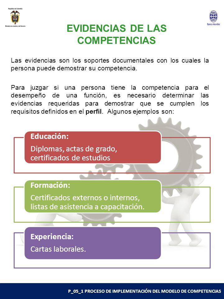 EVIDENCIAS DE LAS COMPETENCIAS
