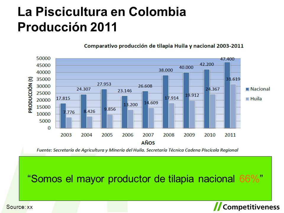Somos el mayor productor de tilapia nacional 66%