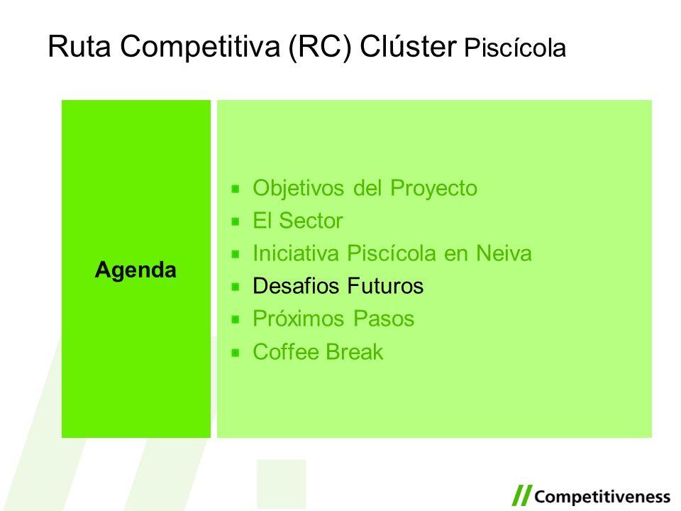Ruta Competitiva (RC) Clúster Piscícola