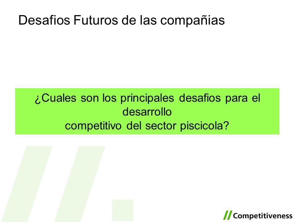 Desafios Futuros de las compañias